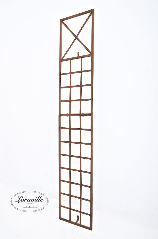 spalier und rankhilfe f r kiwi und wein hausgarten. Black Bedroom Furniture Sets. Home Design Ideas
